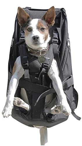 Dog Carrier BIG Hunderucksack Hundetragerucksack Pet Carrier